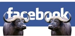 """Le fake news hanno un pubblico 10 volte più piccolo rispetto alle """"notizie vere"""". Il 30% delle bufale è su Facebook. Per rendere i media credibili è arrivata l'ora di staccare la spina daisocial"""